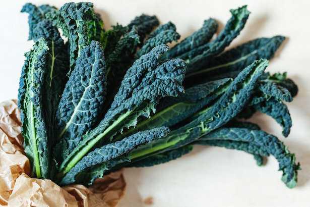 broccolo nero coltivazione cavolo