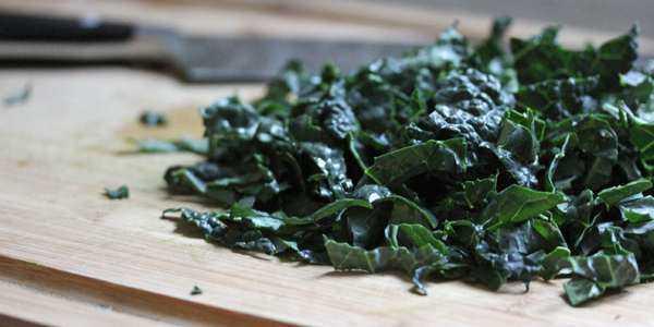 cavolo nero ricetta broccolo nero