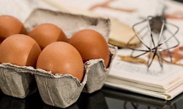 fipronil uova