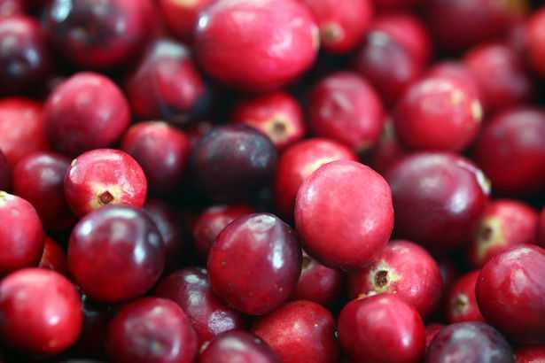 Mirtillo rosso: proprietà e benefici