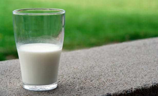 Quale latte bere