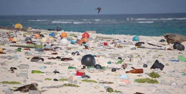 Marine litter: significato e rimedi