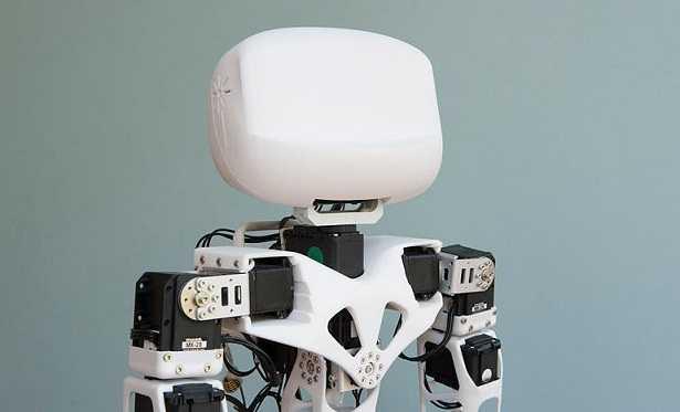 Robot umanoidi