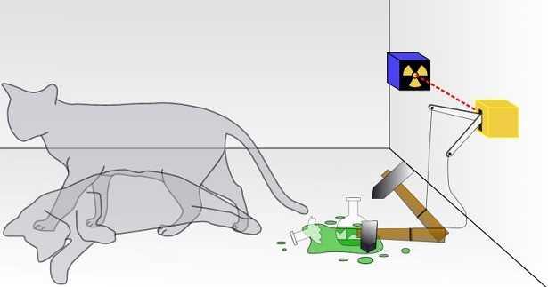 Gatto di Schrödinger: esperimento