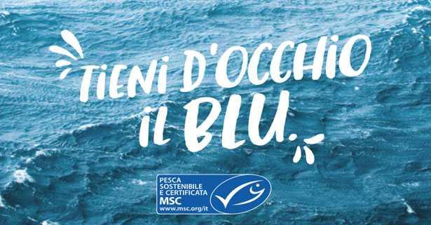MSC tieni d'occhio il blu