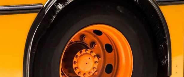 Vulcanizzazione per pneumatici
