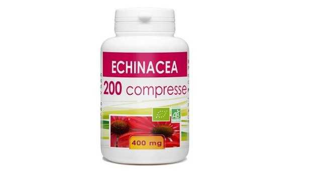 Echinacea Echinacea