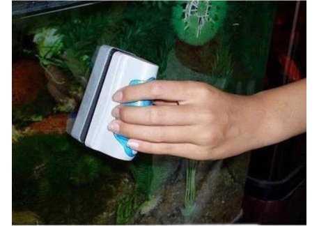 pulizia vetri acquario