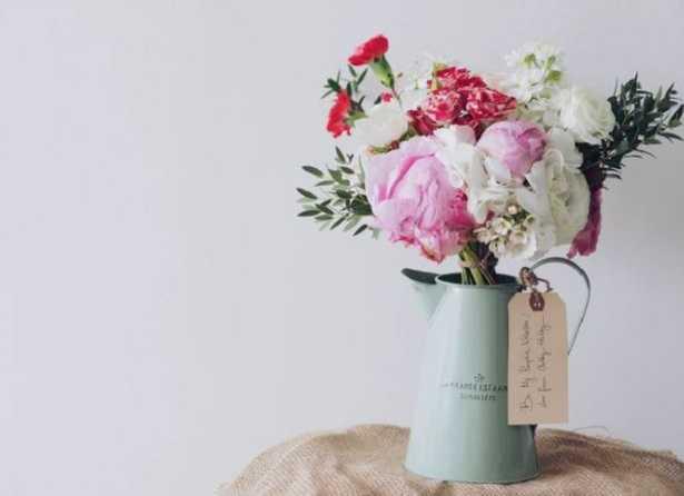 Rose da interno e roselline
