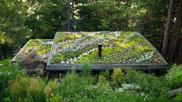 tetto verde costo