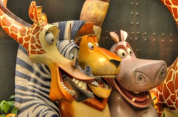 Giraffa di Madagascar: nome