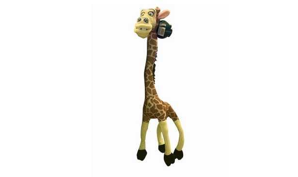 Giraffa del Madagascar: caratteristiche