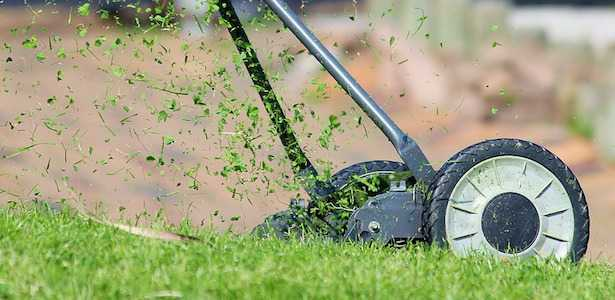 Come tagliare l'erba