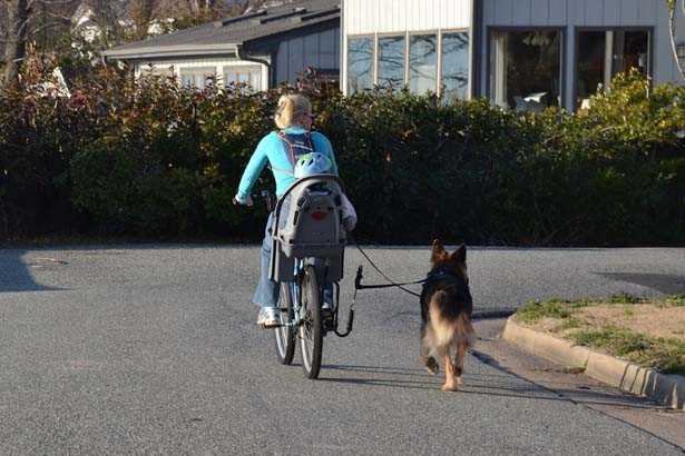 Mamma che pedala con il cane al guinzaglio ed il distanziatore a gancio dalla bici