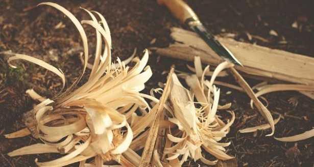 Intagliare il legno e scolpire