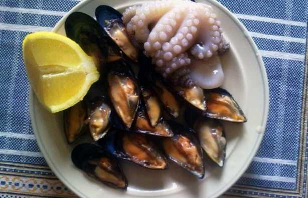 Molluschi: elenco