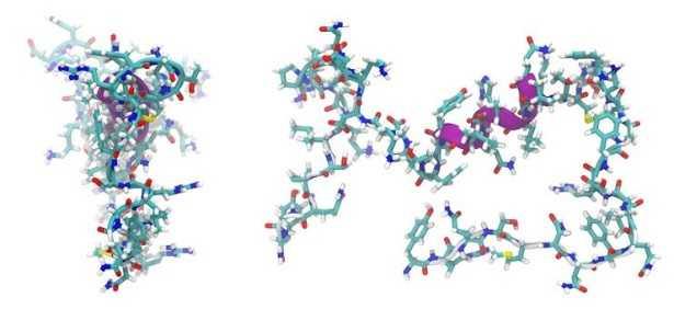 Peptidi