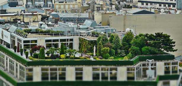 realizzare un giardino sul tetto di casa