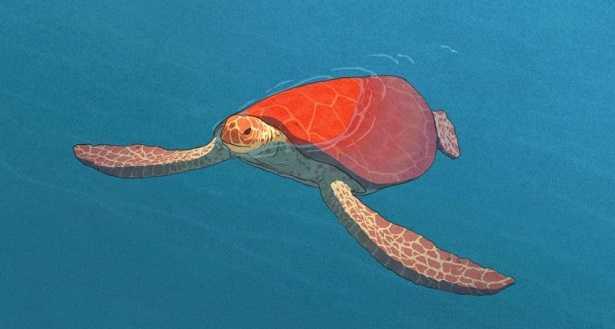 Tartaruga rossa