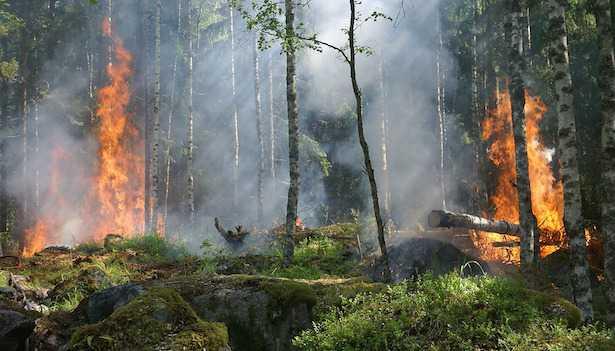Come prevenire gli incendi