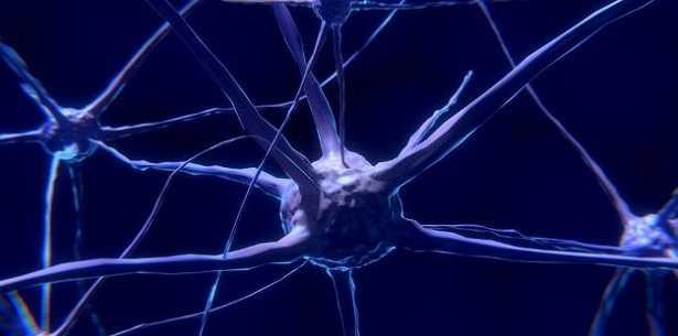 Rete neurale artificiale