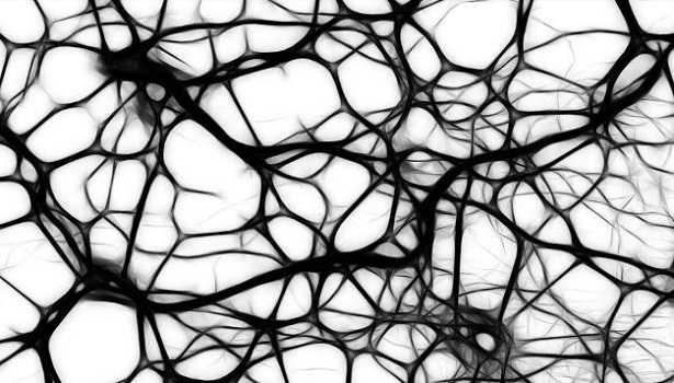 Rete neurale: vantaggi