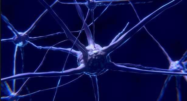 Sinapsi cerebrali