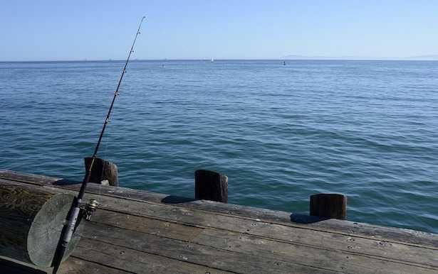 Come scegliere una canna da pesca
