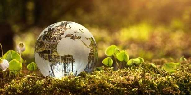 Naturopatia: significato ed efficacia