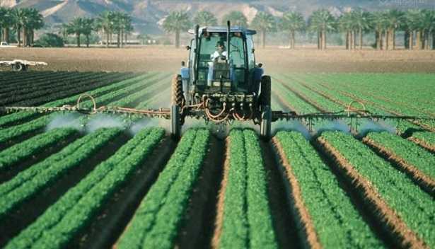 Agricoltura intensiva: significato
