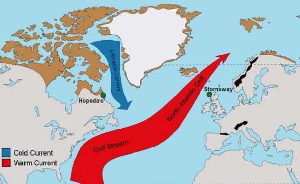 Corrente del Golfo: percorso
