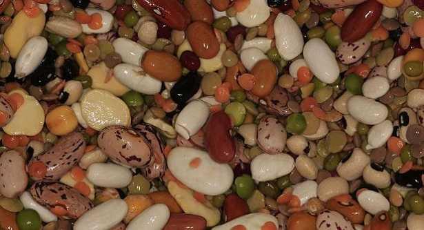 Proteine nobili: cosa sono