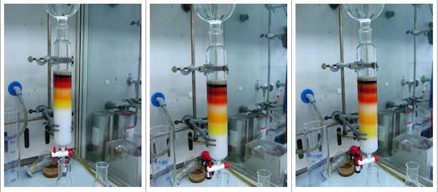 Cromatografia a scambio ionico