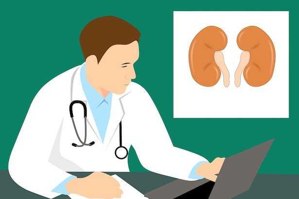 Albumina alta nelle urine