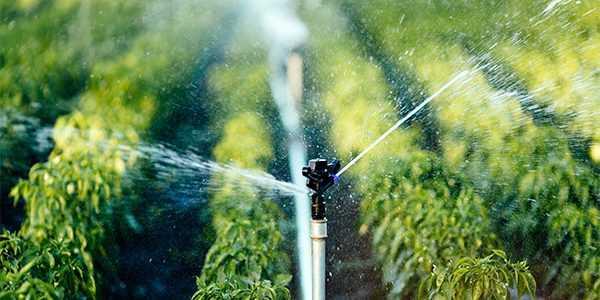 Centralina per irrigazione