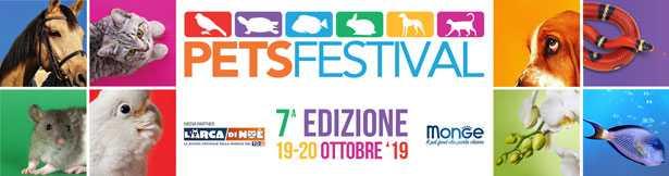 pets festival 2019
