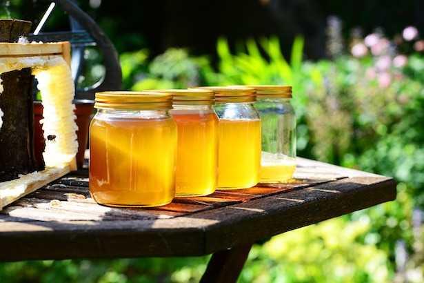 vasetti di miele