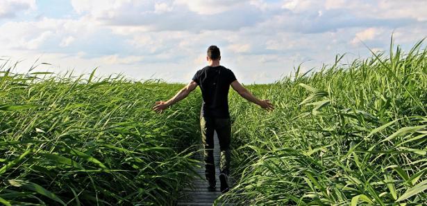 Meditazione camminata
