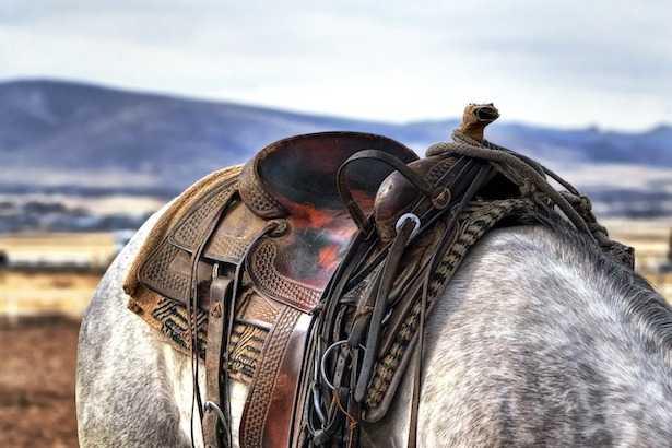 Come cavalcare un cavallo