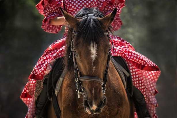 equitazione benefici