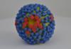 Influenza 2019