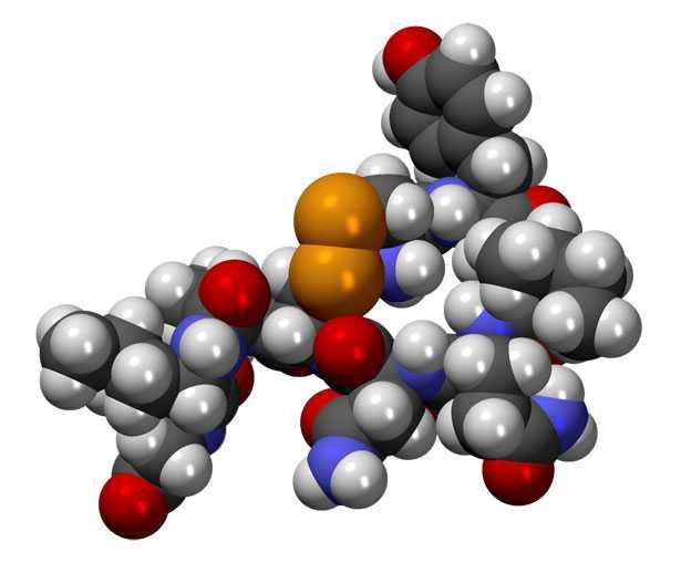 molecola di ossitocina