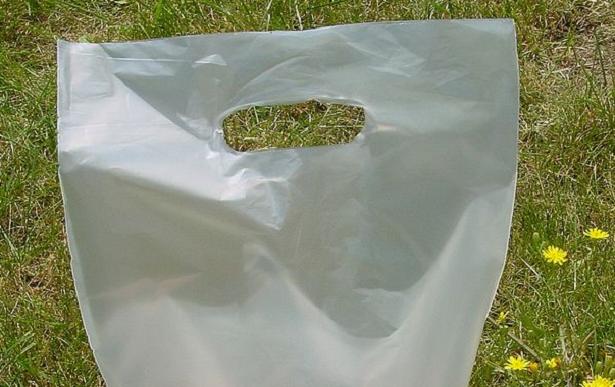 Acido polilattico PLA