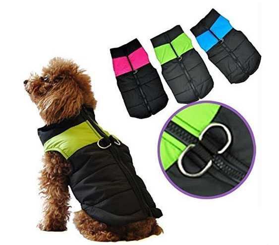 cappottino per cane piccolo