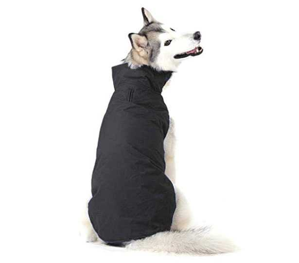 cappottino per cani imbottito