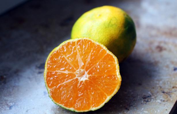 mandarino un cibo anti influenza
