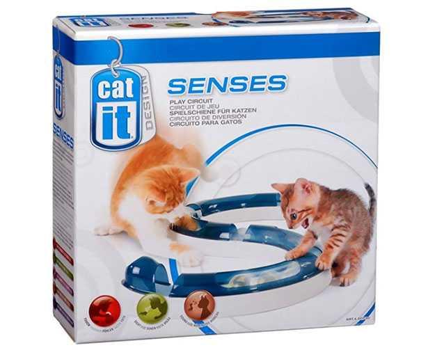 gioco per gatti circuito