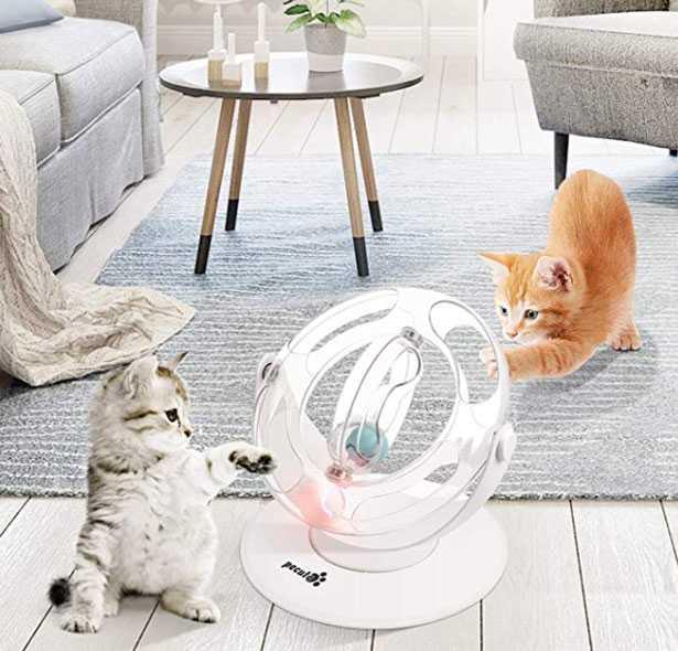 gioco per gatti interattivo