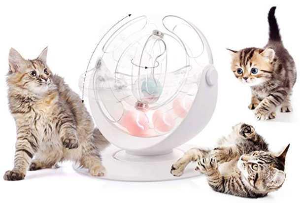 migliori giochi per gatti