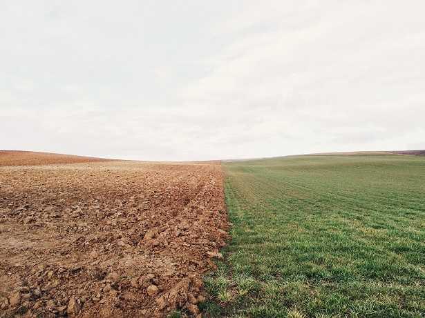 terreno-calcareo